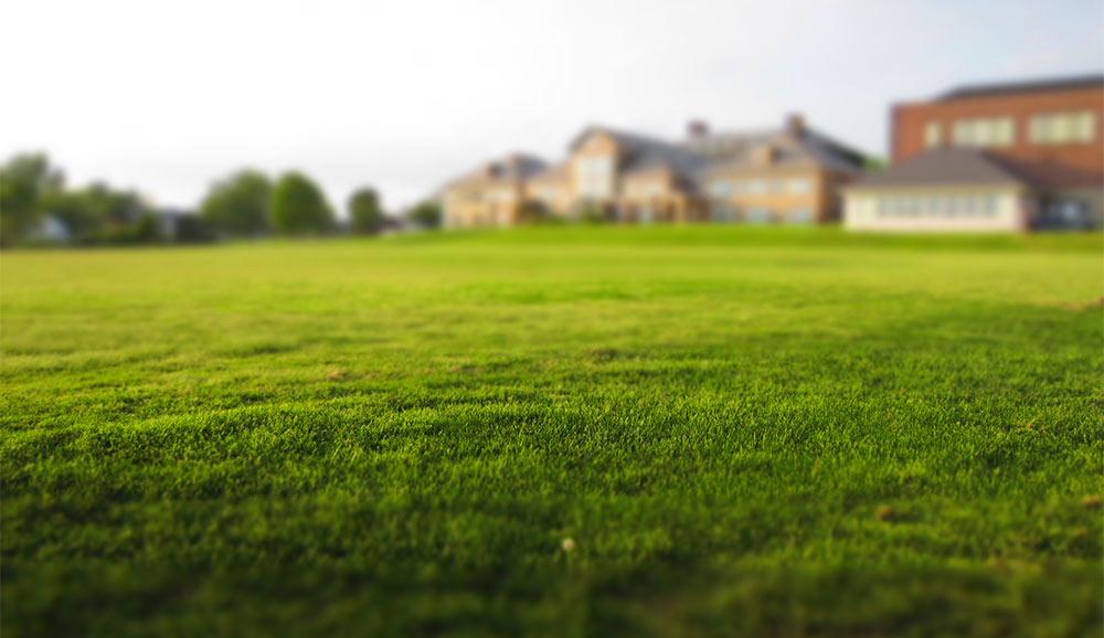 landscaping artificial grass bournemouth dorset